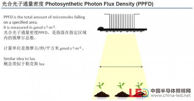 配图05_光合光子通量密度