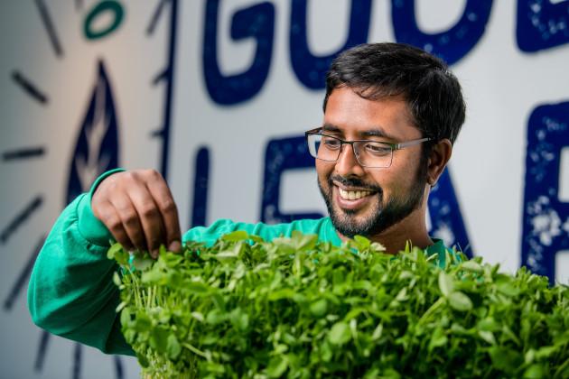 【新闻图片】昕诺飞LED植物照明系统助力加拿大GoodLeaf农场提高全年产量01